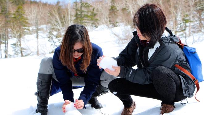 Winter Snow in Shiretoko National Park UNESCO Hokkaido Japan