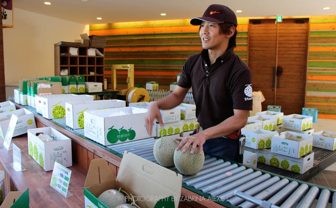Tomita Melon Farm