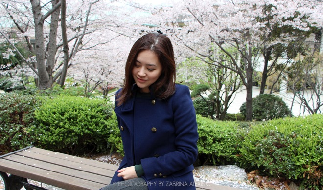 Busan Museum Cherry Blossoms Garden 부산시립박물관 Travel Blog